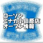 ローソンミナカ小田原店