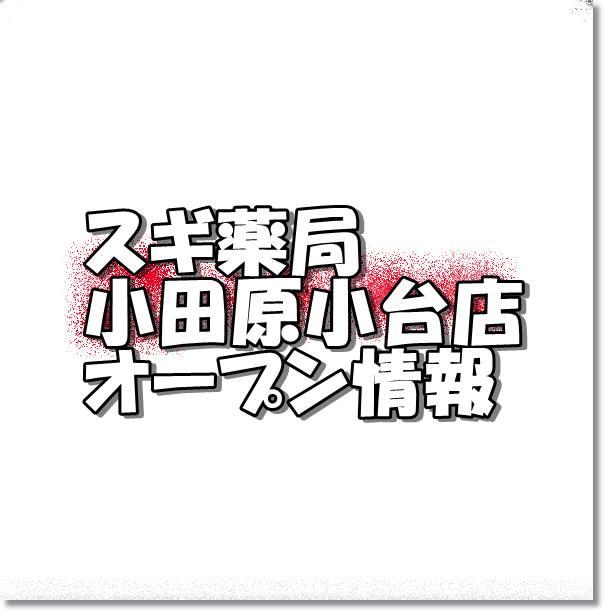 スギ薬局小田原小台店新規オープン情報