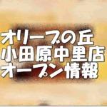 オリーブの丘小田原中里店新規オープン情報