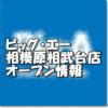ビッグ・エー相模原相武台店